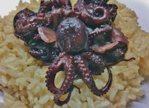 Χταποδάκι κρασάτο, Octopus